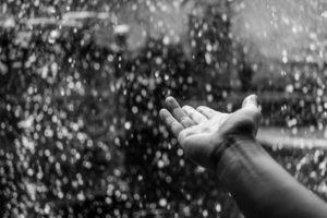 Regner-skomagerdrenge